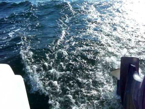Nemo-Sailing costier Marea neagra.MOV
