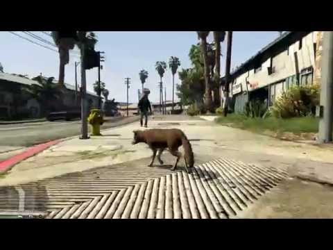TUTTI GLI ANIMALI DI GTA V