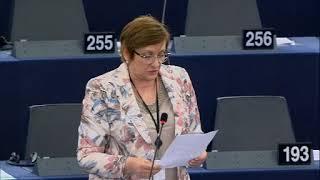 Iskra Mihaylova 18 Apr 2018 plenary speech on Discharge 2016