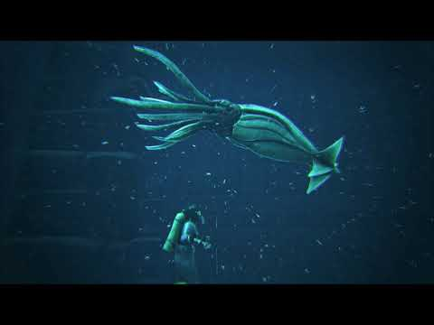 Ark Ragnarok - Naissances Aquatiques #1 - Serveur de Nessendyl Gaming