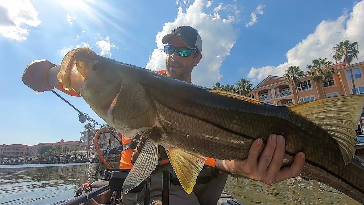 Wrestling The Biggest Snook I've Ever Caught | Kayak Fishing – MOORE