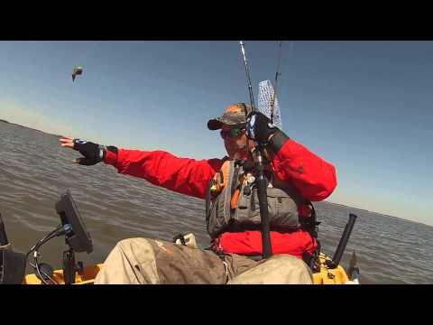 Delaware river striper kayak fishing 4 12 15 youtube for Delaware river striper fishing