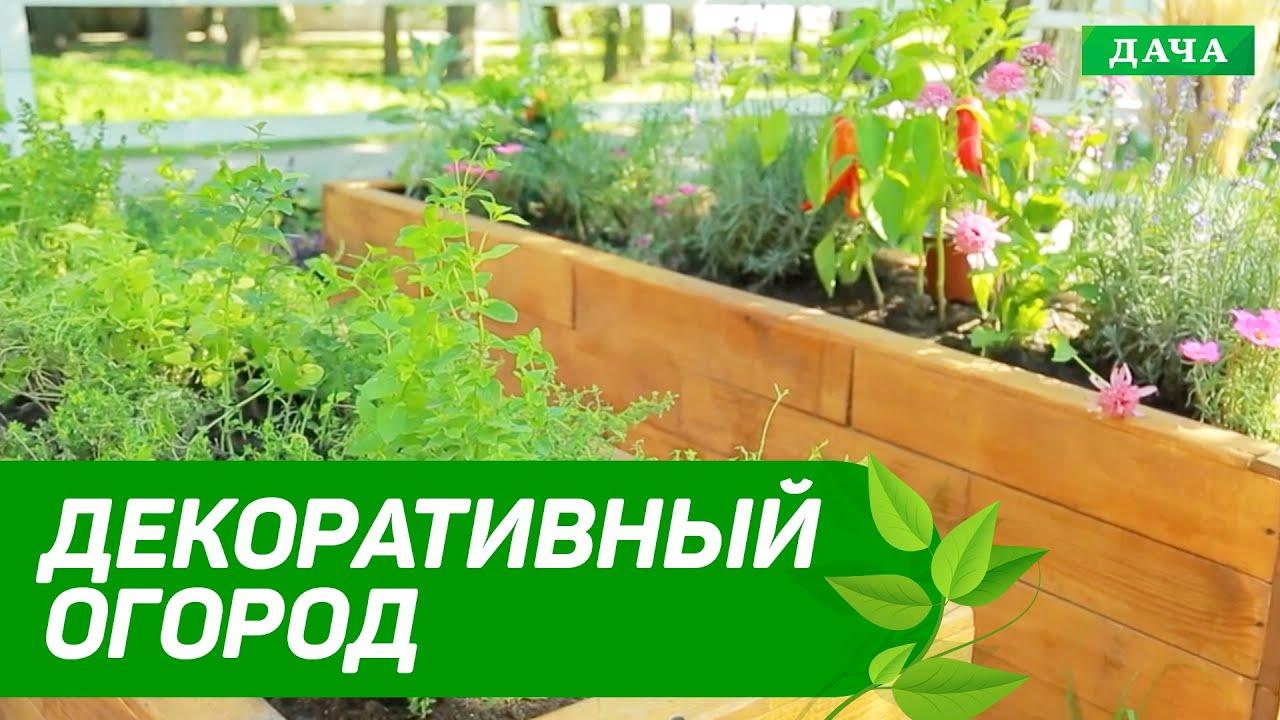 Кухня и Сад: ДЕКОРАТИВНЫЙ ОГОРОД | Высокая грядка своими руками | Как посадить и вырастить растения