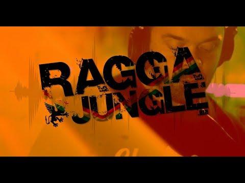 Junglecast Mix Series / FLeCK