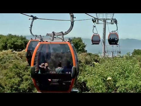 Oakland Zoo Opens New Aerial Gondola System