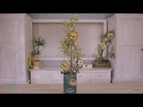 An Italian-Inspired Christmas Olive Tree
