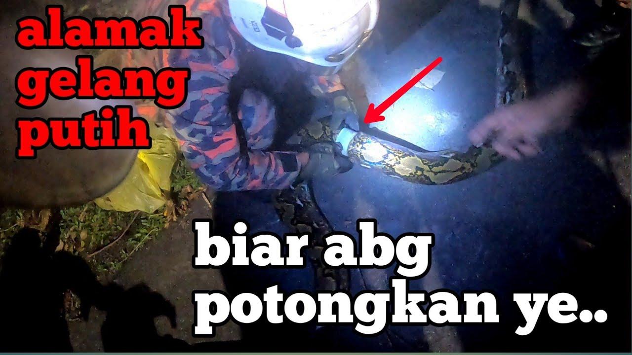 tahu abis kuarantin cari kami eaa 🤣🤣 | khidmat khas ular