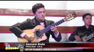 Bryan Romero - Palomita errante, Zamora lindo (Pasacalles) thumbnail