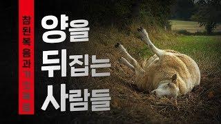 [앤드류강 예배설교]