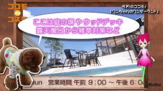 ココモ de コスモ vol.10【ココモ番組】ワンライフ直方 編 MoVist STUDI...