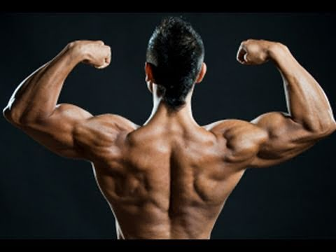 the best home shoulder exercises  complete workout