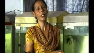 COLOURED FISH FARMER A NEW FIELD OF BUSINESS KRISHI DARSHAN PATNA  DATE OF TELECAST 24.04.13