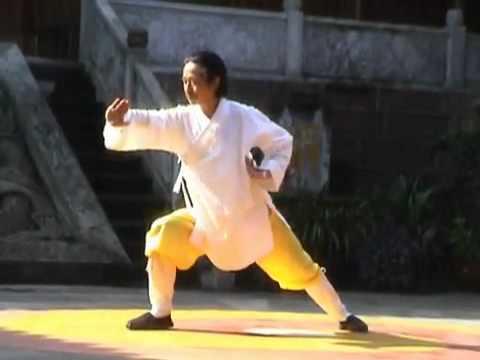 Grandmaster Yuanming Zhang Qigong