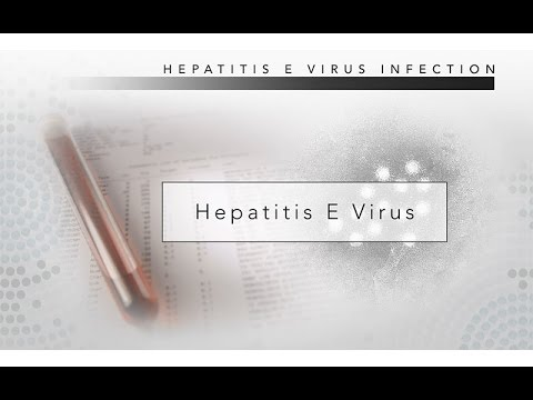 Hepatitis E: CDC Viral Hepatitis Serology Training