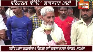 amit patil patur nandapur grampanchayat upsarpanch says about tiger