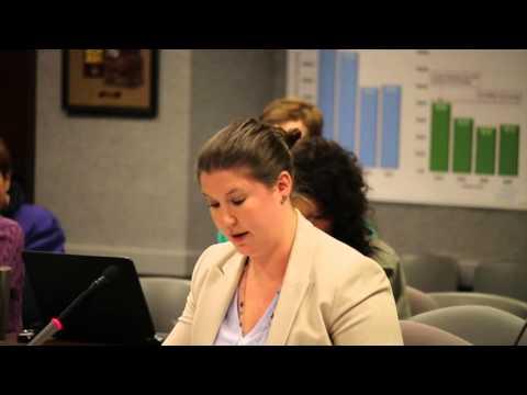 Jan 21, 2016 TCEQ SIP Hearing: Amanda Crowe o/b/o Rep. Johnson (part 3)