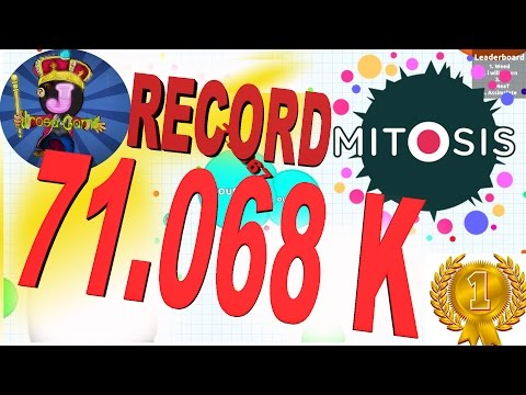 WORLD RECORD - 71.068 FFA PRIVADO - score - mitosis the game