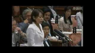 2012.07.10 参議院予算委員会 森まさこ(自民党)