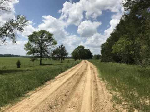Warren County Mississippi 490 Acres