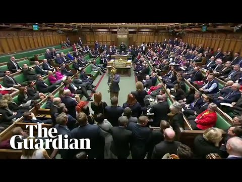 'Put it back!': Labour MP grabs the mace during parliament