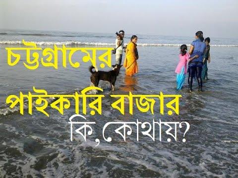 Chittagong wholesale market চট্টগ্রামের বিভিন্ন পণ্যের বাজার কি কোথায়?।ctgbashi।Visit Chittagong