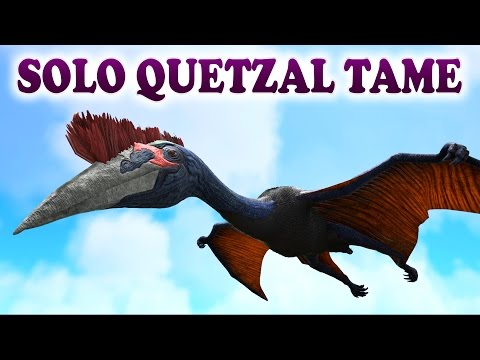 ARK   HOW TO SOLO TAME A QUETZAL WITH A GRAPPLING HOOK   Solo Quetzal Tame ARK Survival Evolved