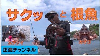 サクッと根魚・餌釣り編