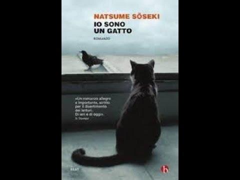 """"""" Io sono un gatto """" di Natsume Soseki"""
