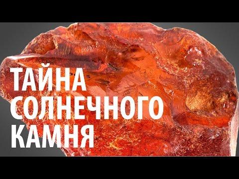 ТАЙНА СОЛНЕЧНОГО КАМНЯ. Ярослав Попов   Палеонтологические истории #004