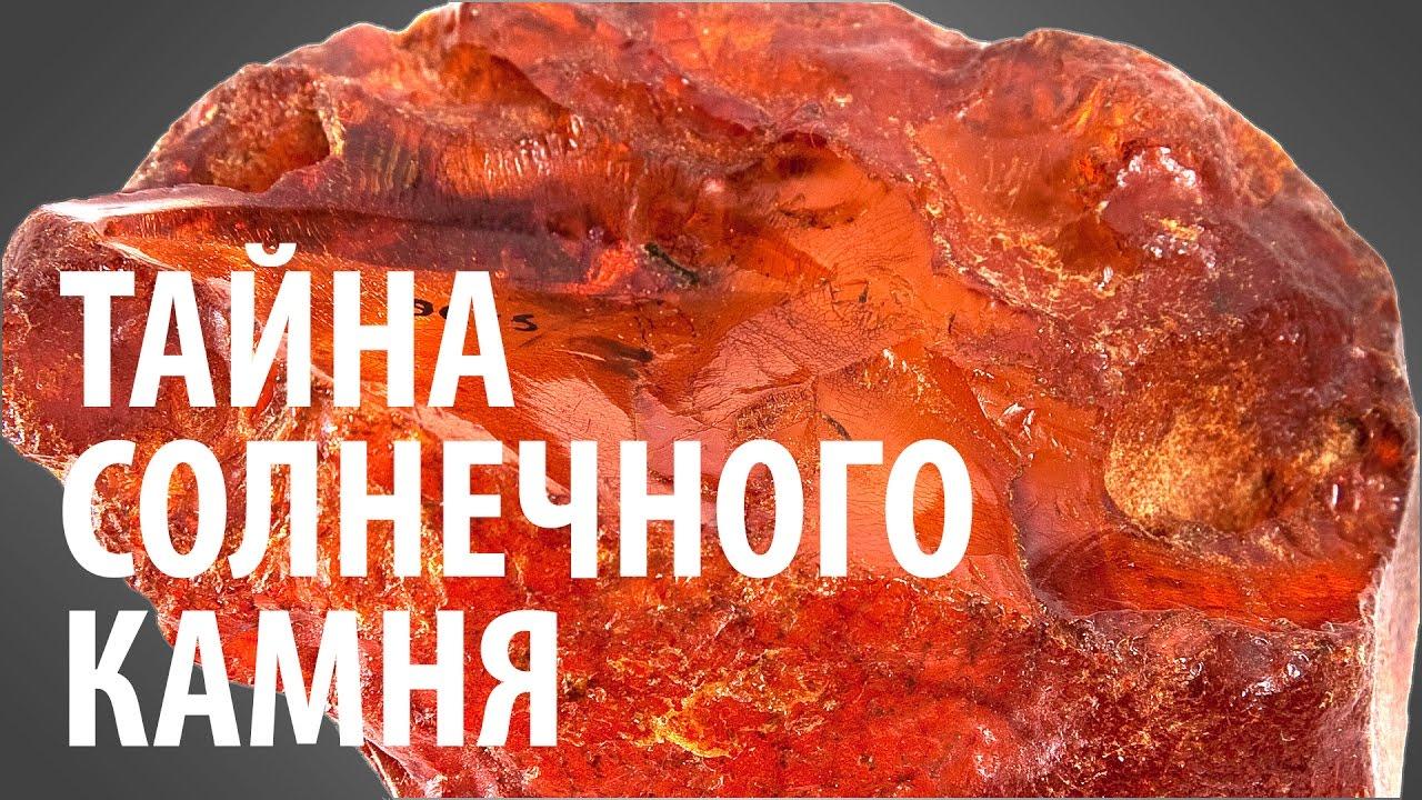 ТАЙНА СОЛНЕЧНОГО КАМНЯ. Ярослав Попов | Палеонтологические истории #004