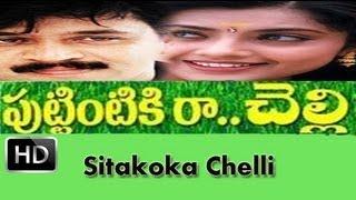 Sitakoka Chelli | Puttintiki Ra Chelli | Telugu Movie | Video Song | Arjun