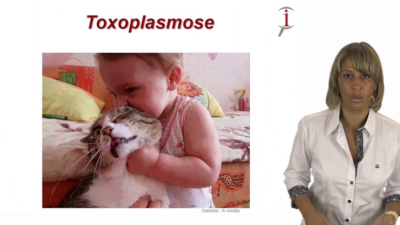 BAIXAR VIDEO DE TOXOPLASMOSE