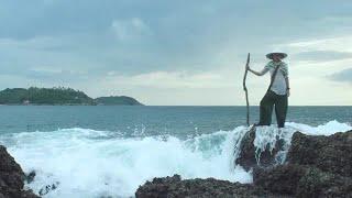 Girl On Ocean Rock Stock Video