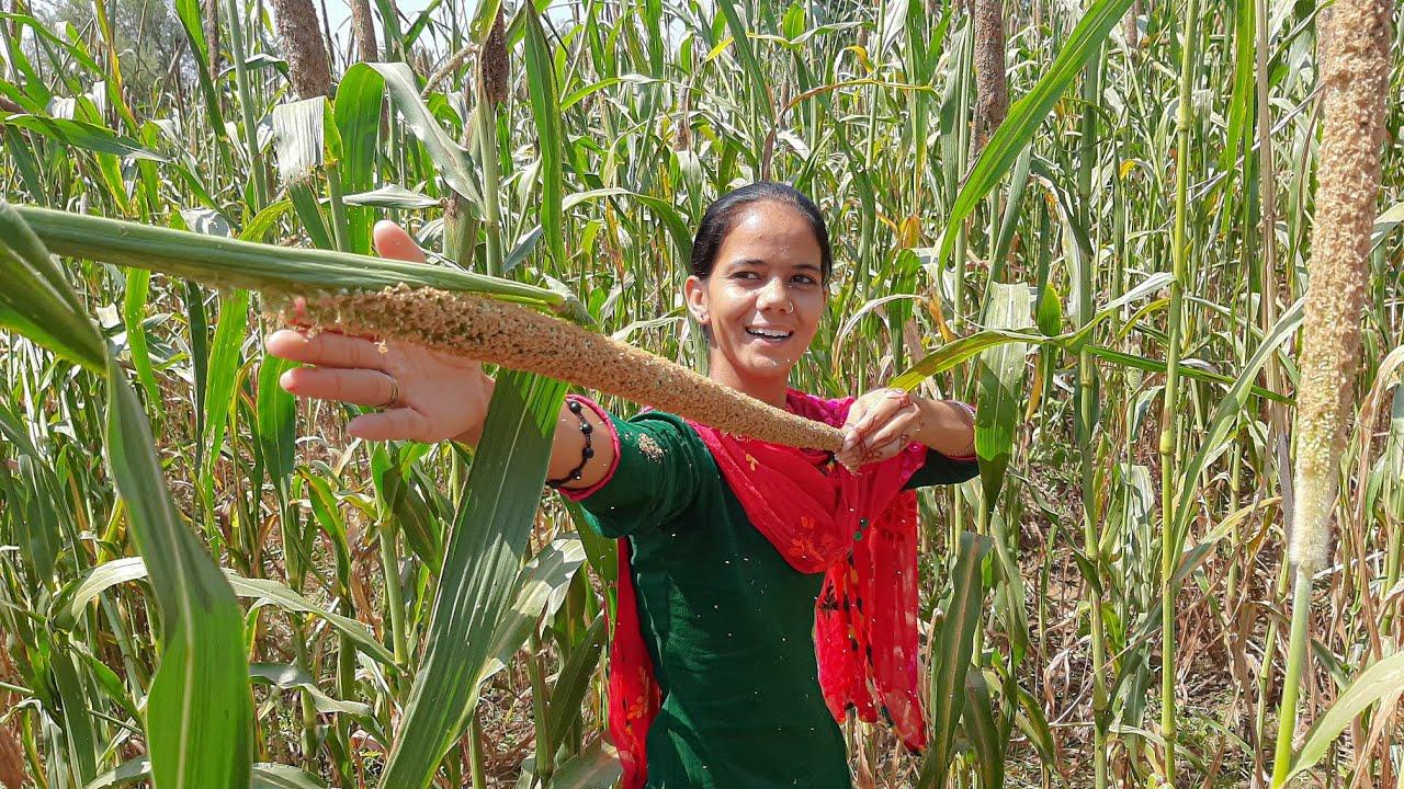 Aur Kitna Bada Hoga? - Tour to Beautiful Village Culture| place | Churu Jhunjhunu | Rajasthan India