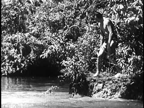 the-new-adventures-of-tarzan-(1935)-jungle-adventure