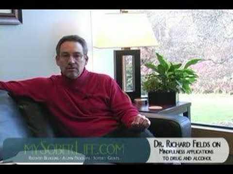 Drug Addiction and Mindfulness Part I - mySoberLife.com