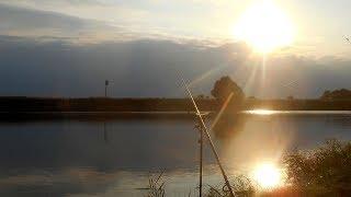Фидерная ловля на нижней Москве реке в сентябре.