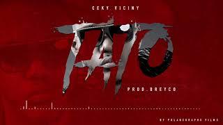 Ceky Viciny - TATO (Prod. Breyco)