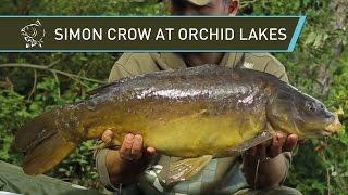 Саймон Кроу квиток на цілий день риболовлі на коропа на озерах Орхид - Неш, Короп Рибалка 2014 DVD фільм