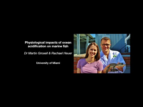 Martin Grosell & Rachael Heuer - Physiological impacts of ocean acidification on marine fish