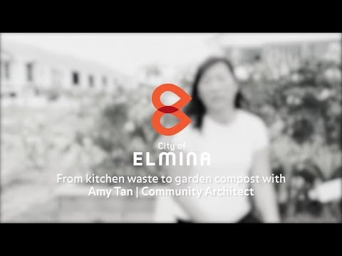 The Architects of Elmina – Amy Tan (Community Architect) 3