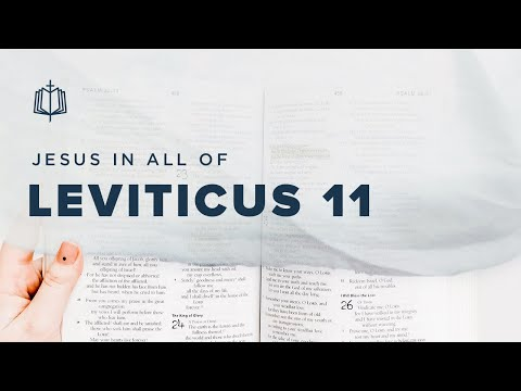 CLEAN AND UNCLEAN ANIMALS | Bible Study | Leviticus 11