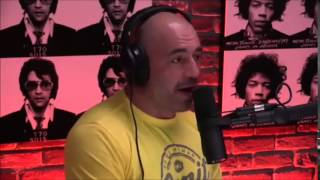 Joe Rogan & Dr. Dan Engle on Addiction, Ibogaine and Flow states