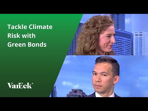 Tackle Climate Risk with Green Bonds