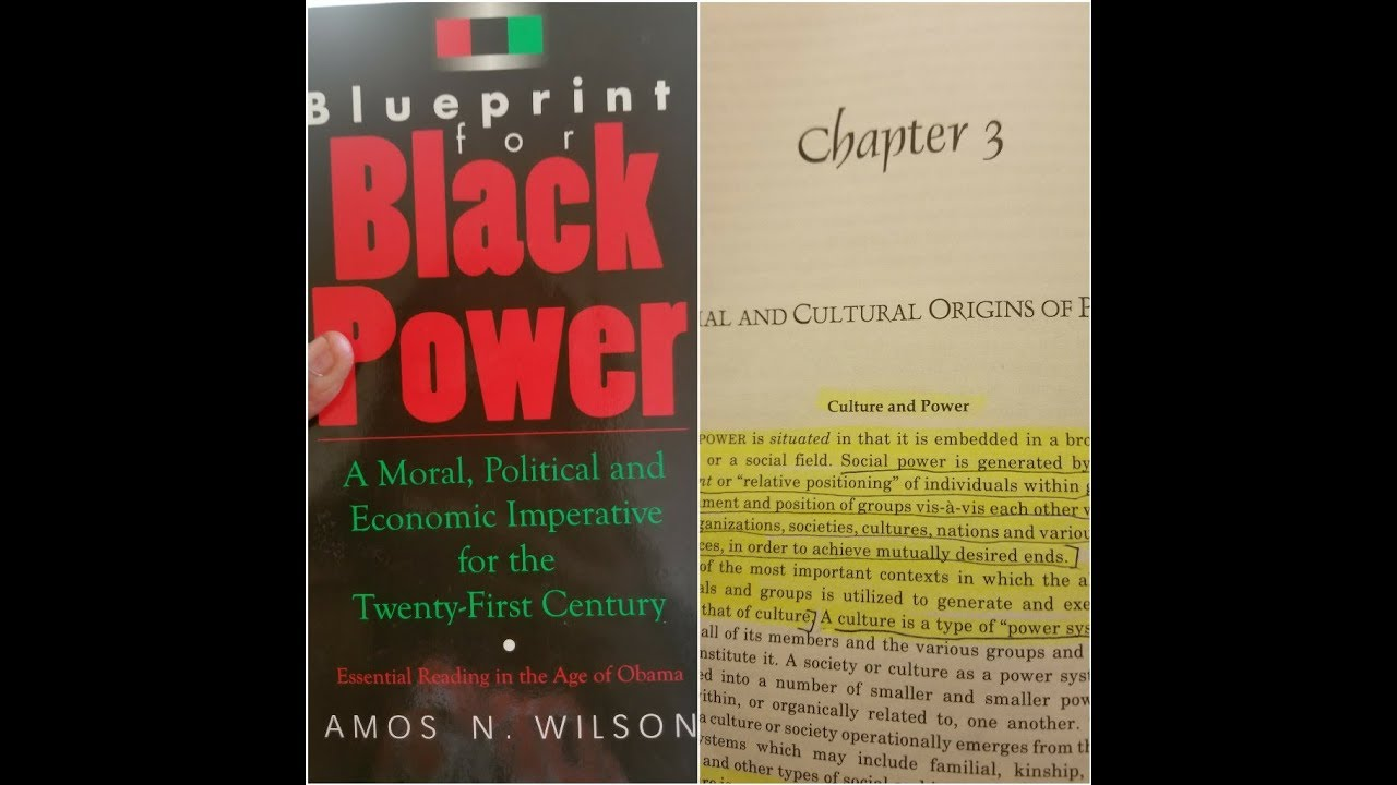Dr. Amos Wilson, Blueprint For Black Power Chapter 3- RAM Bookclub