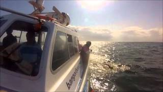 Colleen Mallon North Channel Crossing 2014