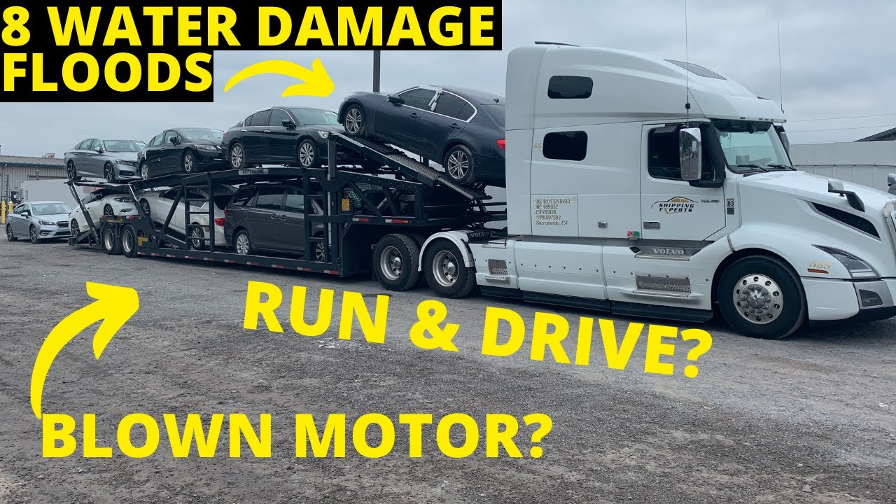 Download MORE WATER FLOOD CARS CAME IN, HOW DID WE DO? PART 1