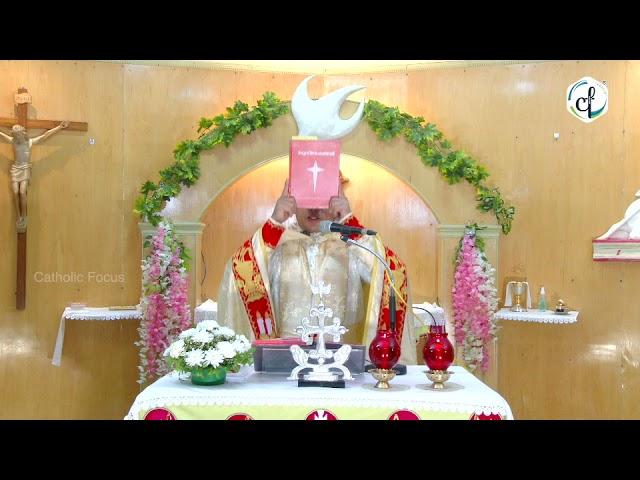 Holy Qurbana    17 June 2021    Catholic Focus
