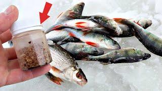 Забрал всю рыбу с пруду за пару часов Вот секретная прикормка которая работает и зимой и летом