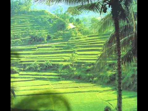 The Balinese traditional Bambu & flute Music.
